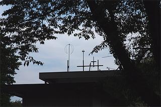 mitaka-15.jpg